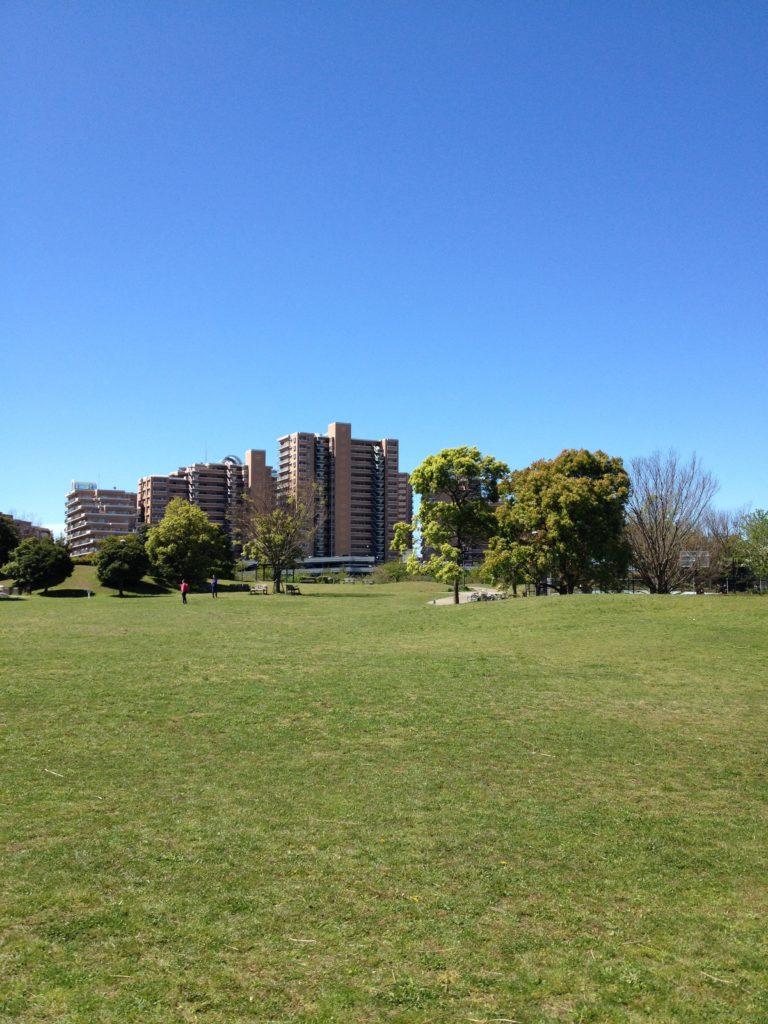 浦安の芝生がいっぱい広がっている公園
